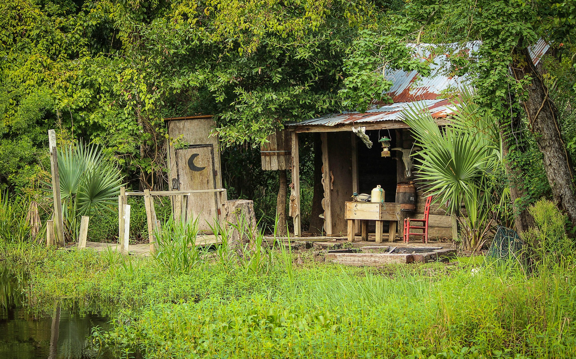 Cabin on swamp in New Orleans