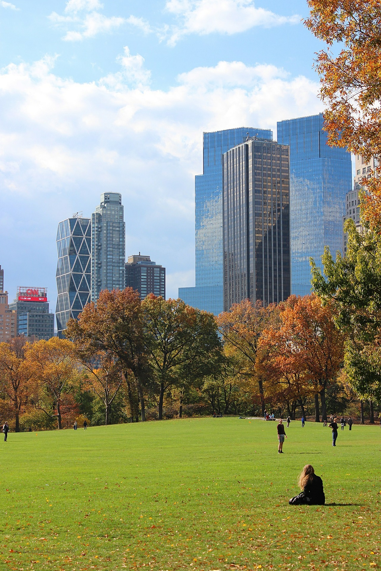 Central Park with GO Educational Tours